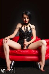Elife Arjin, sexjenter i Elverum - 12686